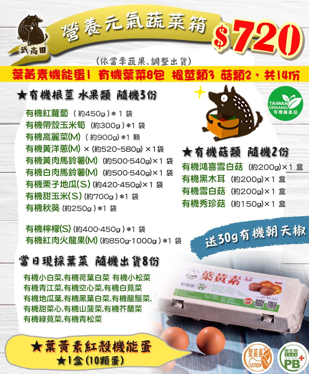 營養元氣蔬菜箱